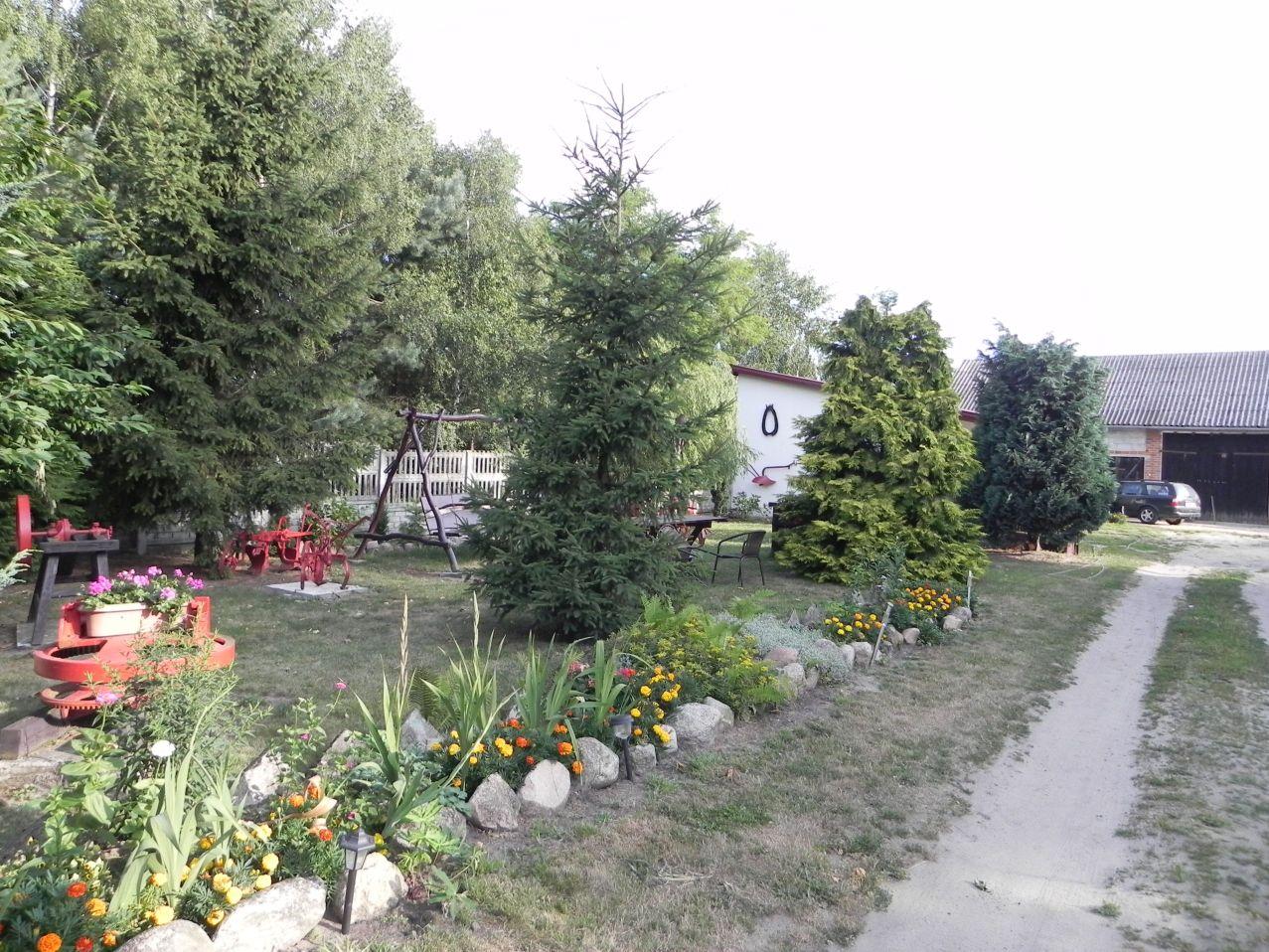Galeria zdjęć Sochowej Zagrody - podwórko i przyroda (68)