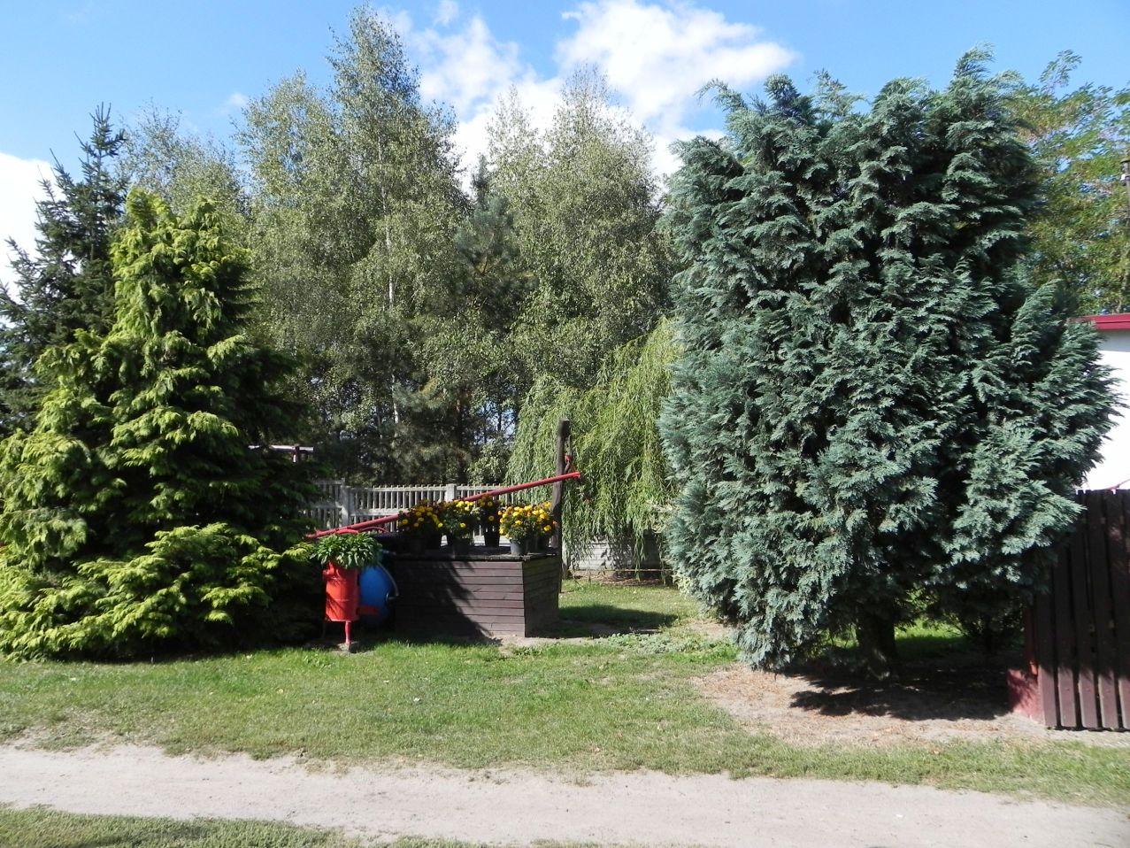 Galeria zdjęć Sochowej Zagrody - podwórko i przyroda (76)
