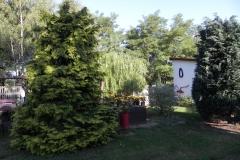 Galeria zdjęć Sochowej Zagrody - podwórko i przyroda (73)