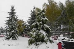 Galeria zdjęć Sochowej Zagrody - podwórko i przyroda (79)