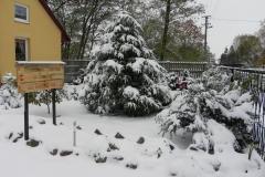 Galeria zdjęć Sochowej Zagrody - podwórko i przyroda (85)