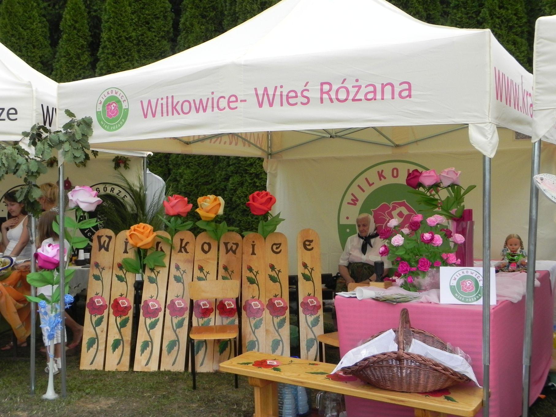 2013-08-18 Dożynki pszczelarskie (46)