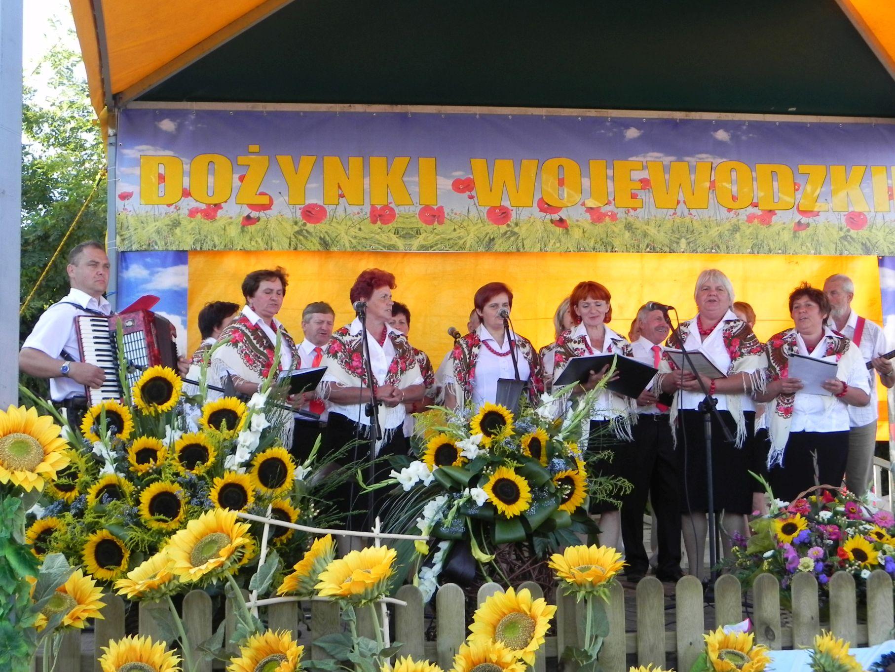 2013-08-26 Dożynki wojewódzkie (87)
