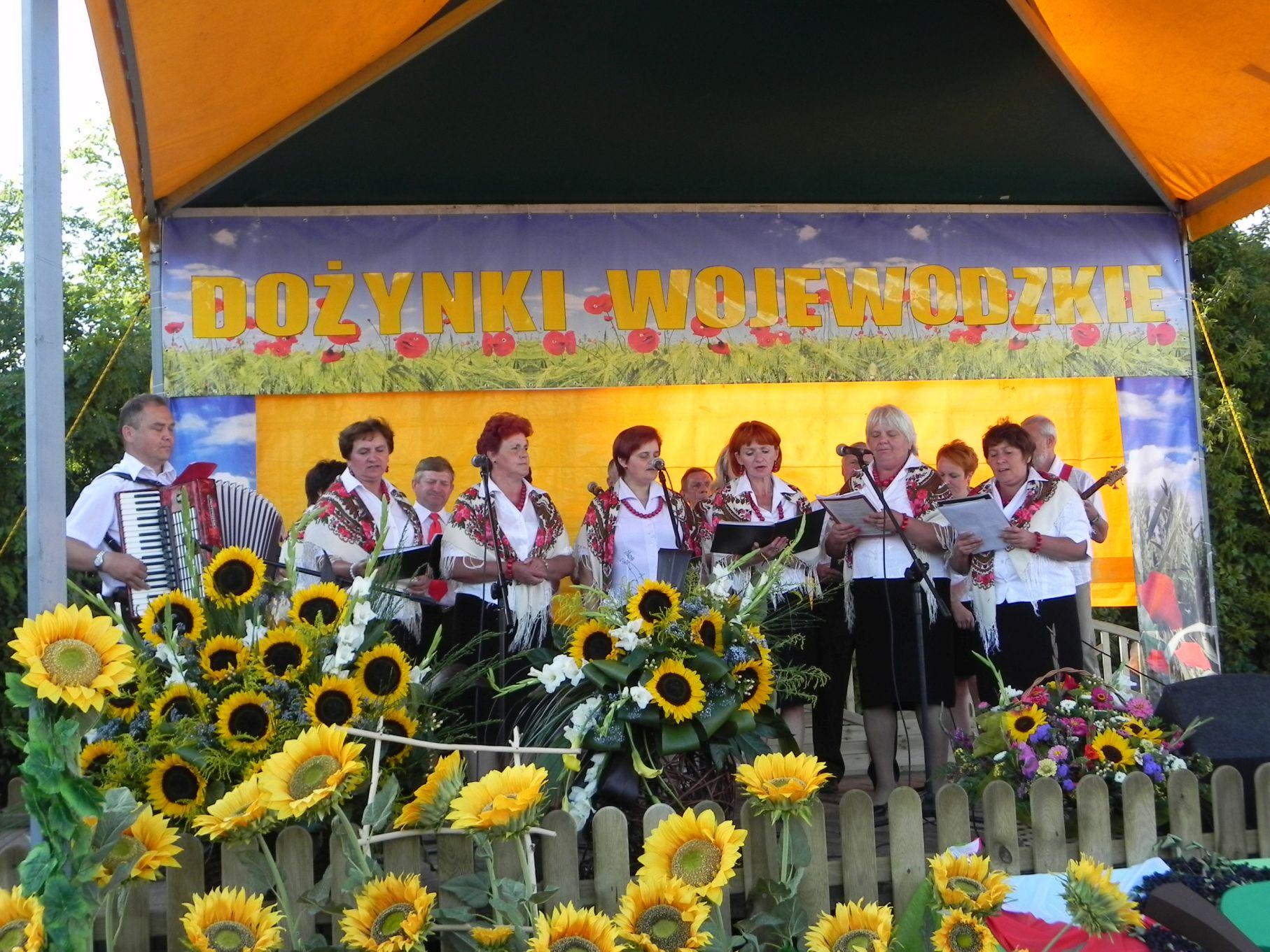 2013-08-26 Dożynki wojewódzkie (90)
