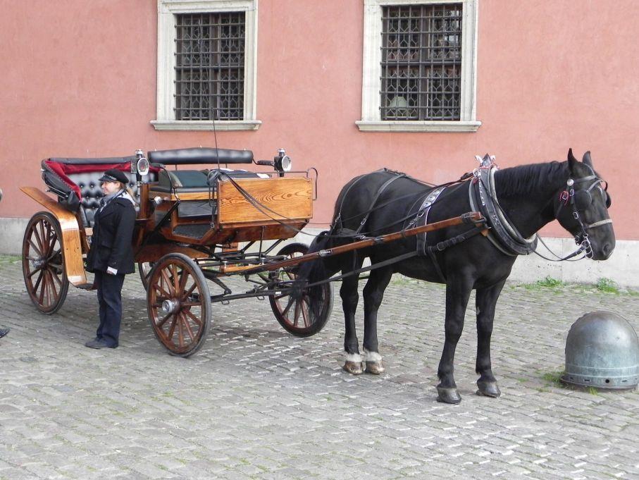 2013-10-01 Warszawa - wycieczka (104)