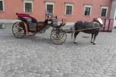 2013-10-01 Warszawa - wycieczka (103)