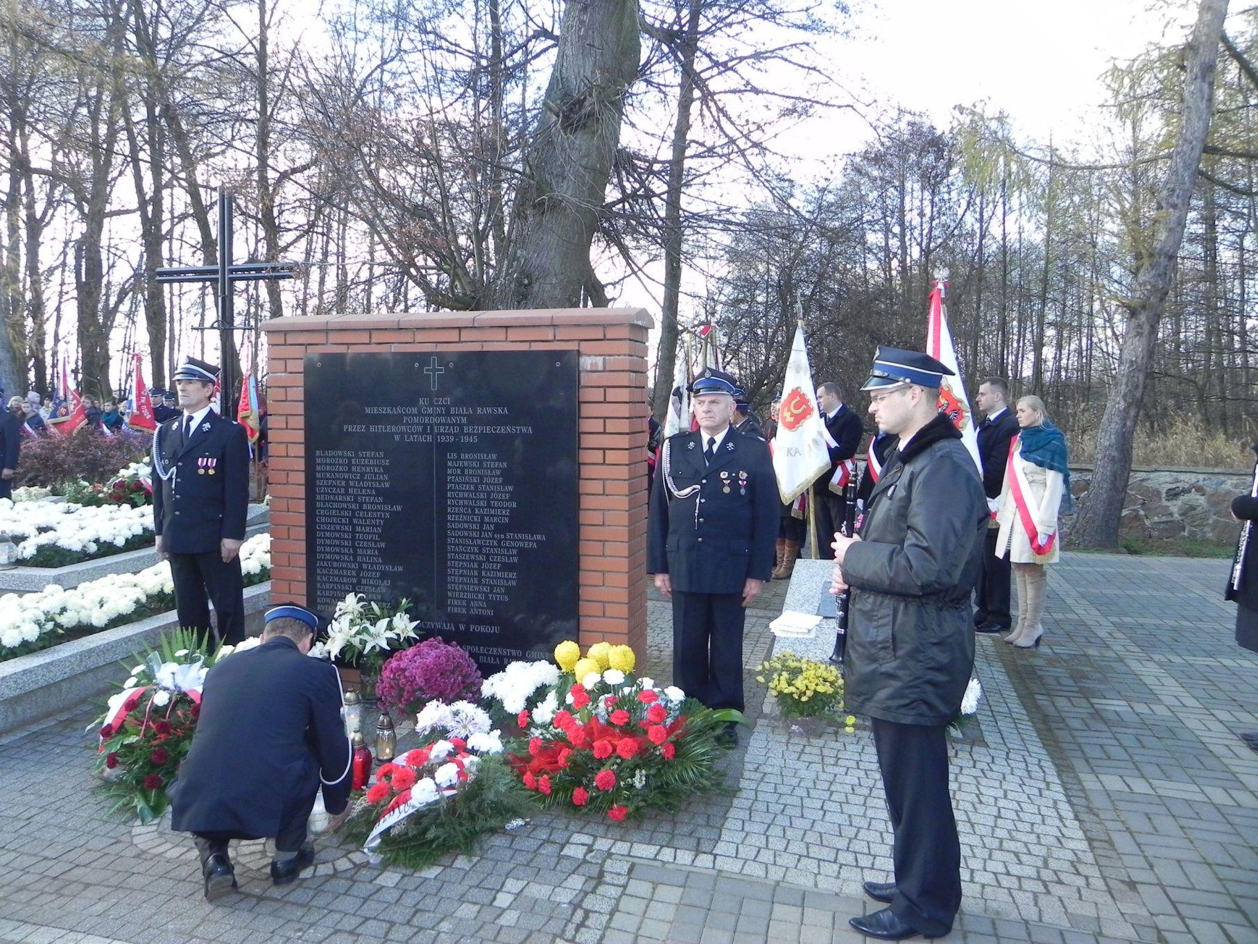 2013-11-11 Biała Rawska - 11 listopada (82)