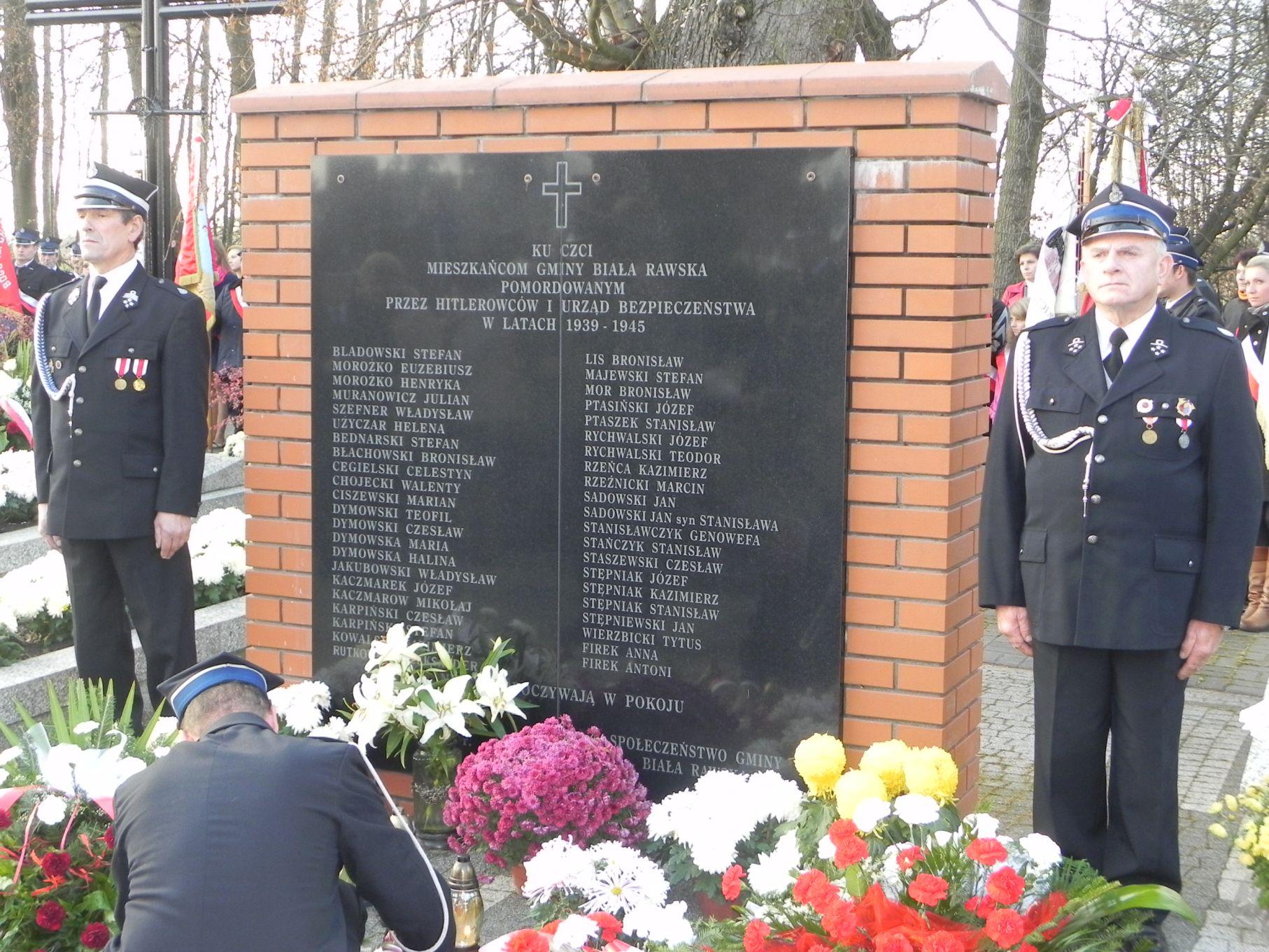 2013-11-11 Biała Rawska - 11 listopada (83)