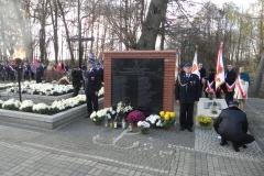 2013-11-11 Biała Rawska - 11 listopada (69)