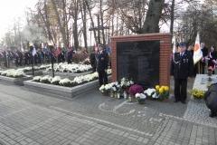 2013-11-11 Biała Rawska - 11 listopada (70)