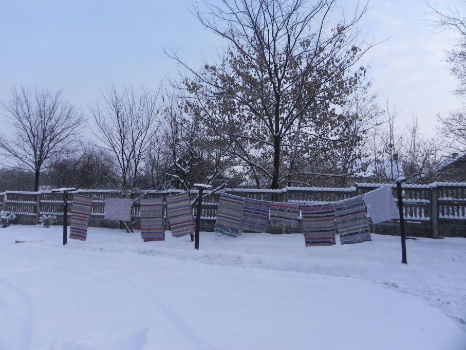 Galeria zdjęć Sochowej Zagrody - podwórko i przyroda (17)