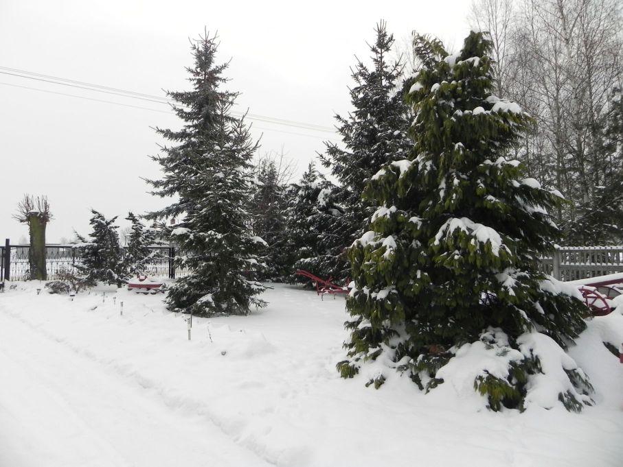 Galeria zdjęć Sochowej Zagrody - podwórko i przyroda (22)