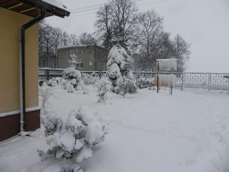 Galeria zdjęć Sochowej Zagrody - podwórko i przyroda (54)