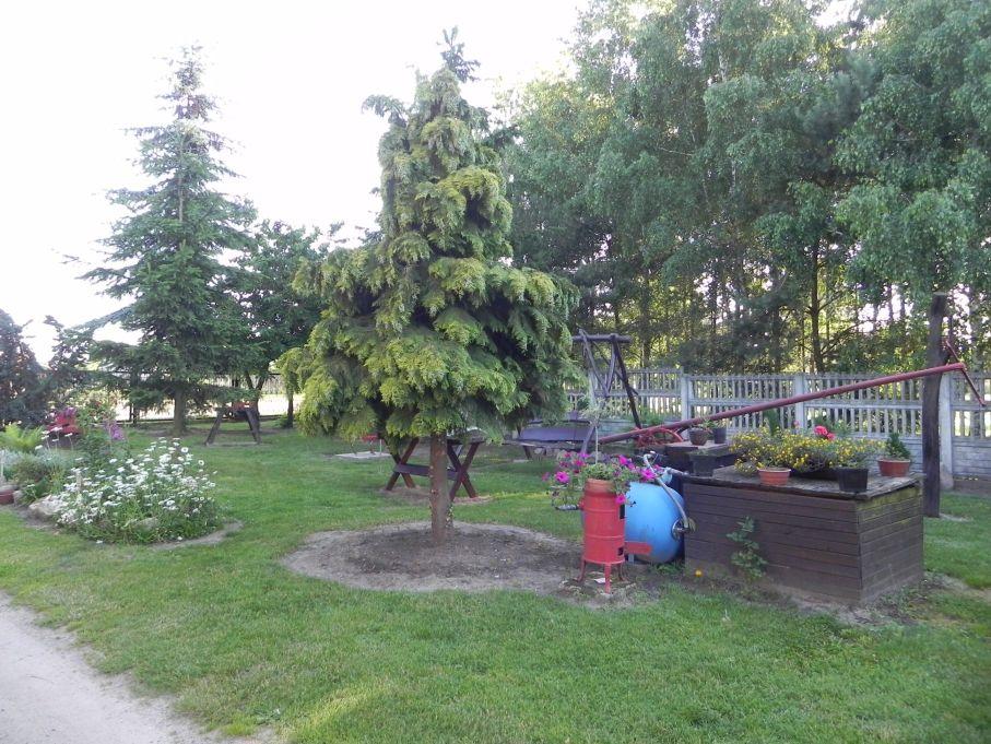 Galeria zdjęć Sochowej Zagrody - podwórko i przyroda (109)