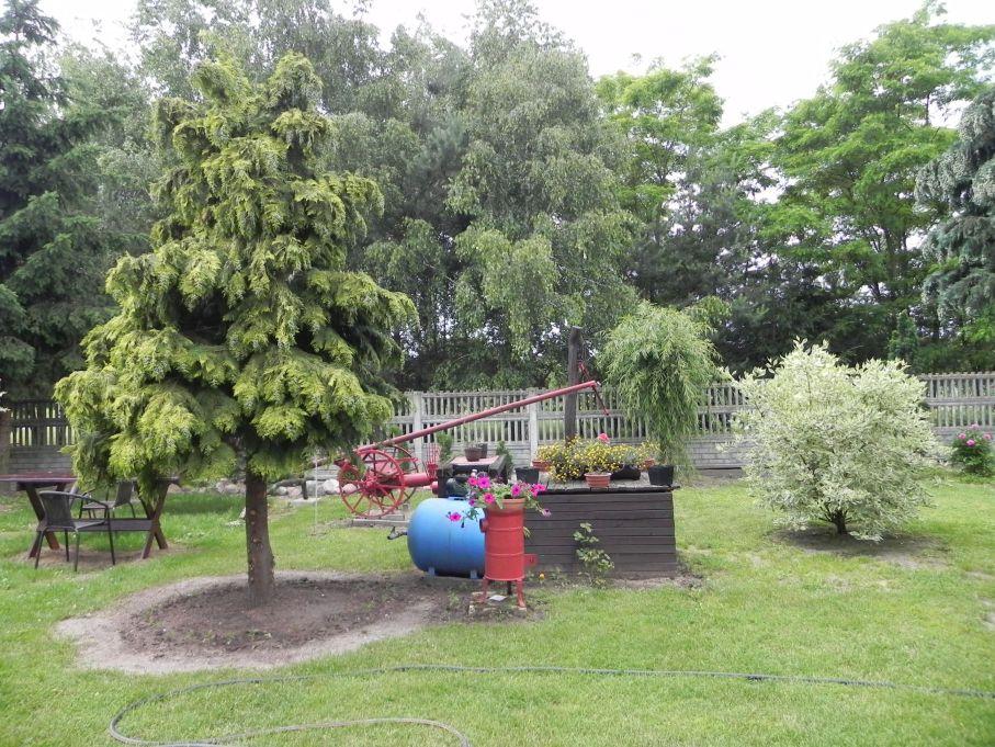 Galeria zdjęć Sochowej Zagrody - podwórko i przyroda (90)