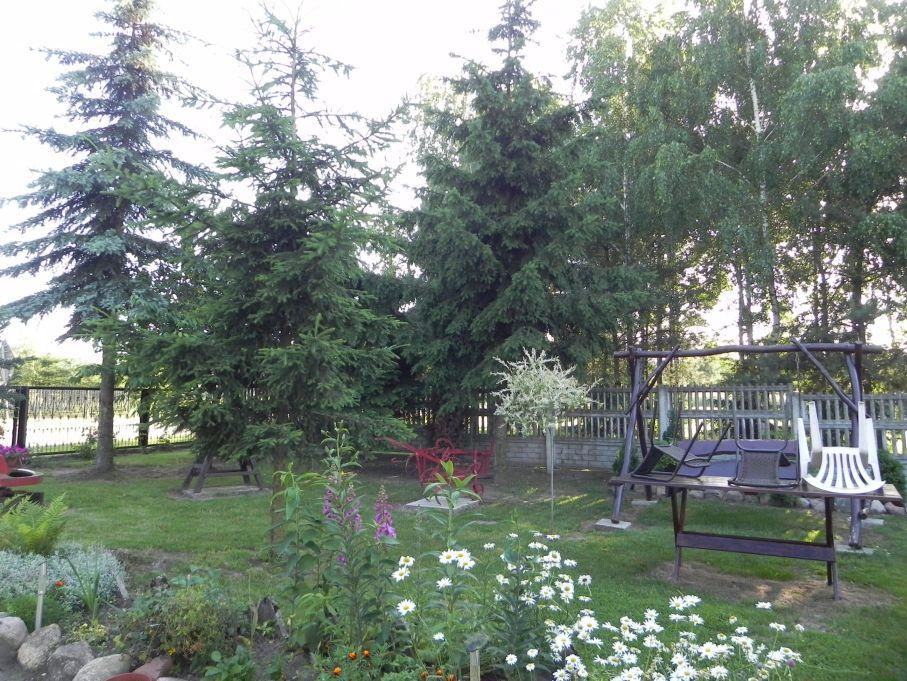 Galeria zdjęć Sochowej Zagrody - podwórko i przyroda (122)