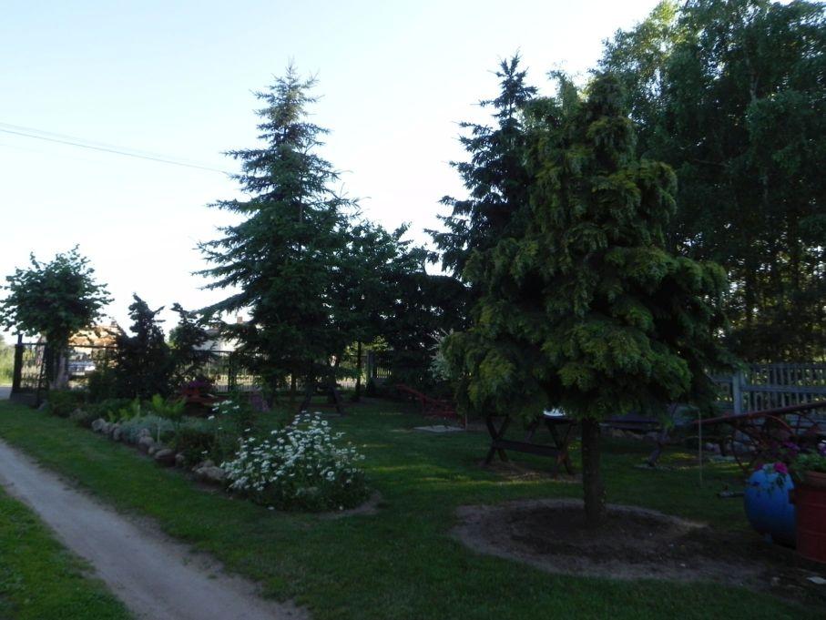 Galeria zdjęć Sochowej Zagrody - podwórko i przyroda (123)