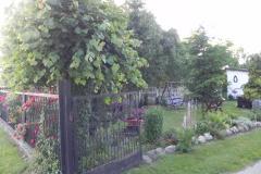 Galeria zdjęć Sochowej Zagrody - podwórko i przyroda (119)