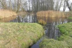 Galeria zdjęć Sochowej Zagrody - podwórko i przyroda (212)