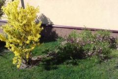 Galeria zdjęć Sochowej Zagrody - podwórko i przyroda (40)