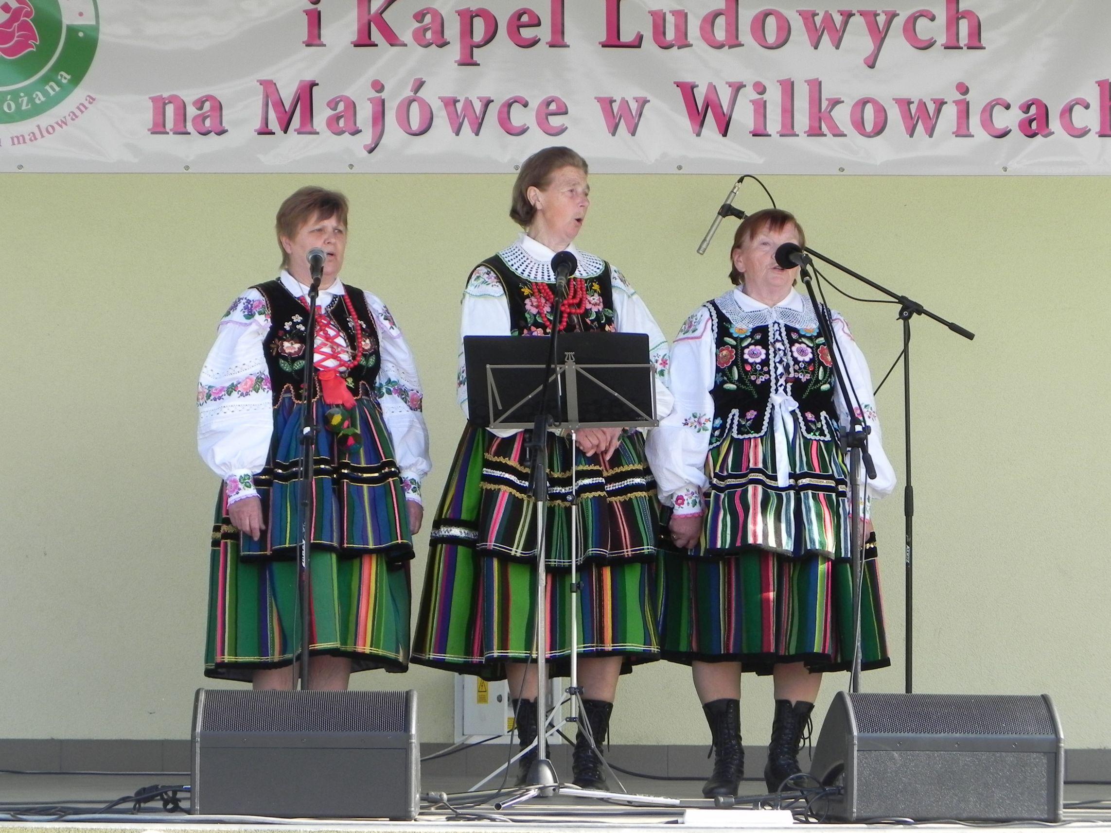 Wilkowice - majówka (107)