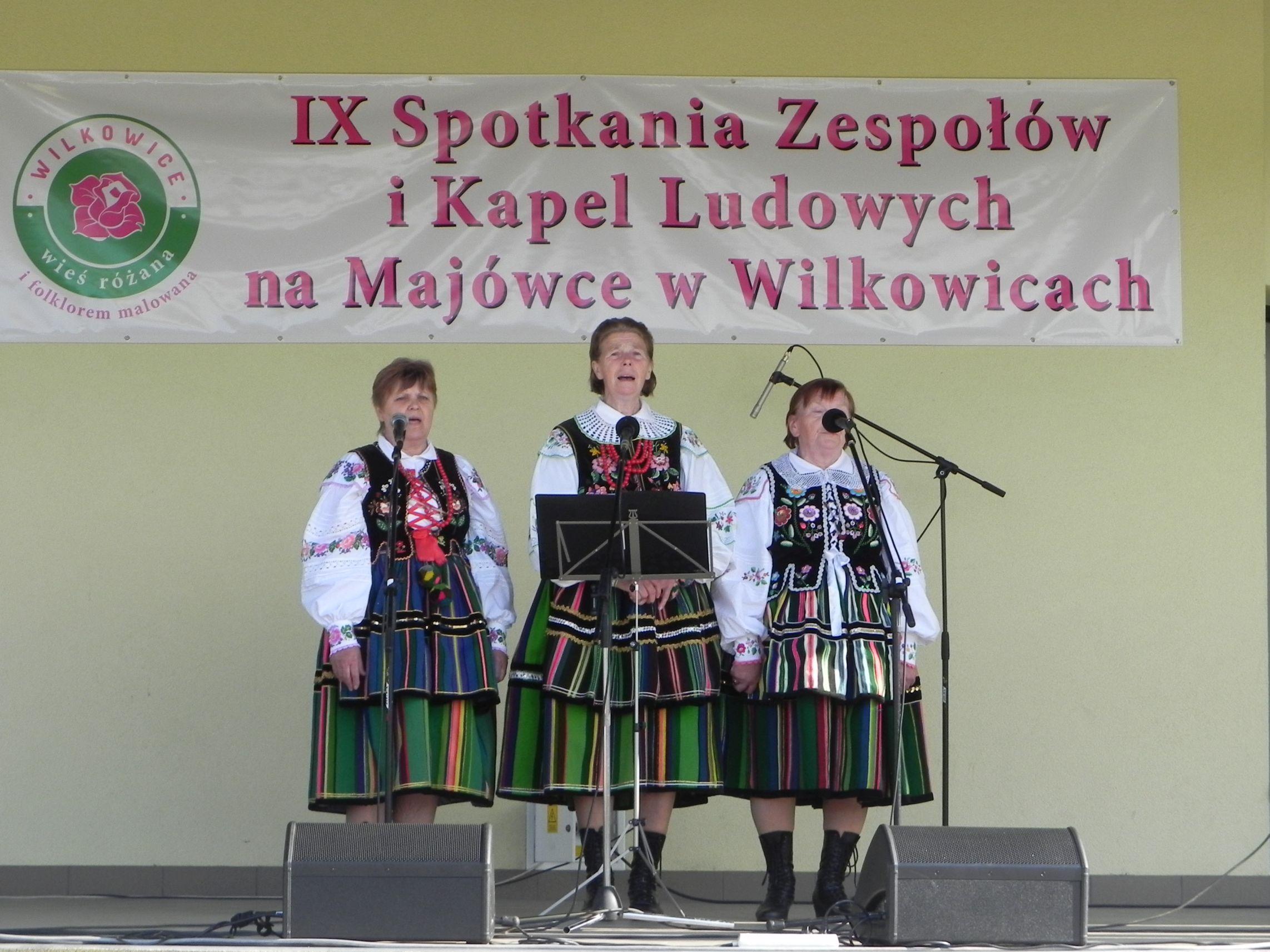 Wilkowice - majówka (108)