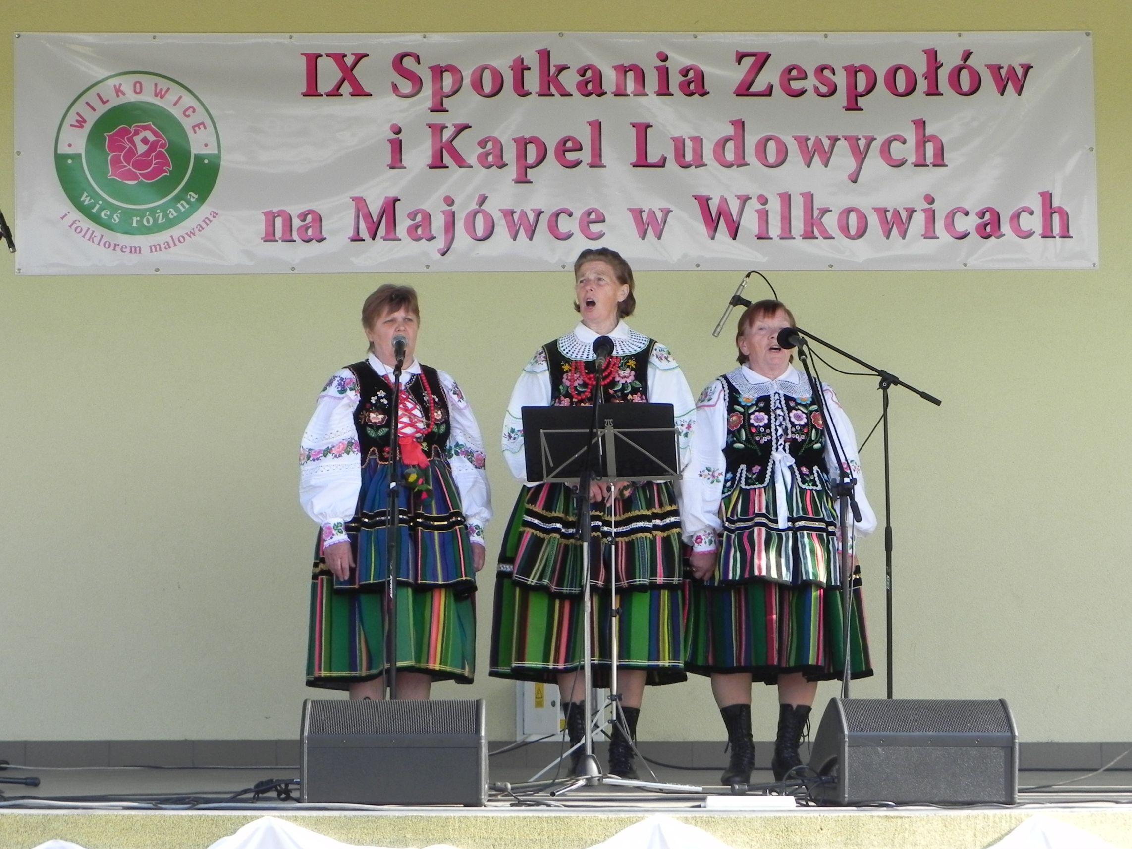 Wilkowice - majówka (109)