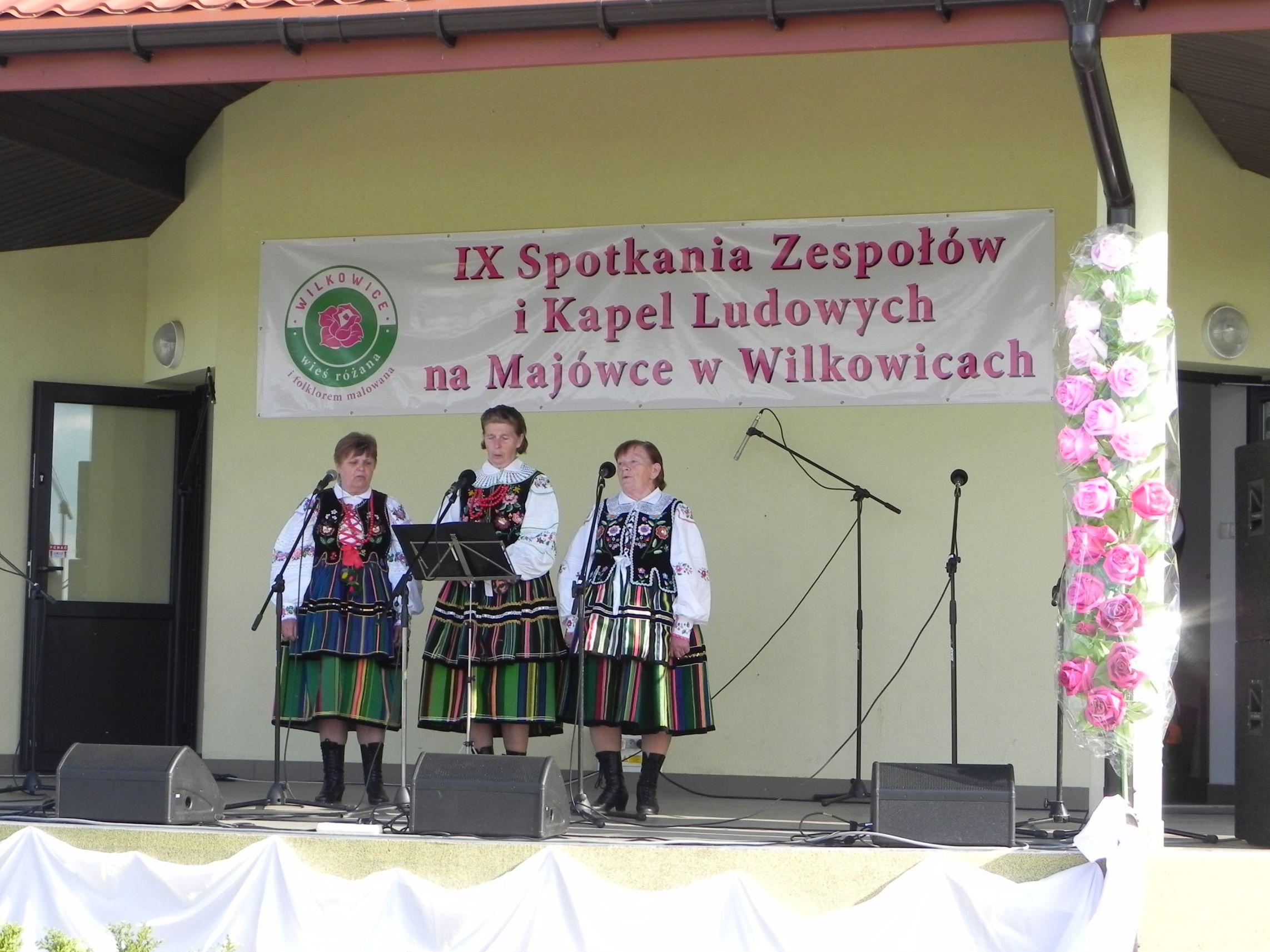 Wilkowice - majówka (114)