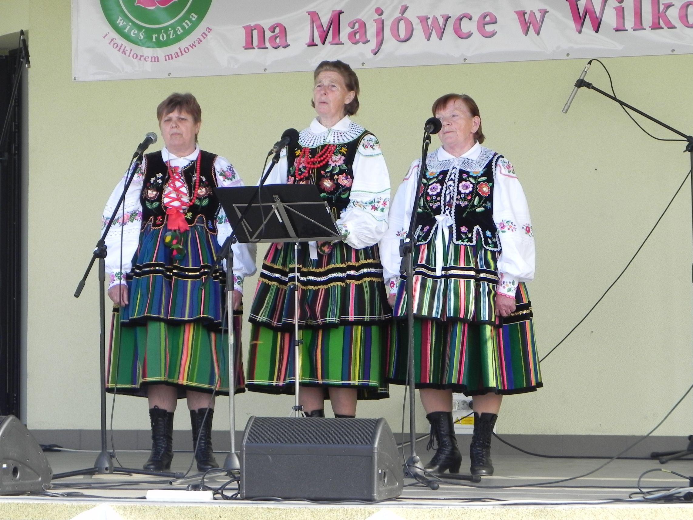 Wilkowice - majówka (115)