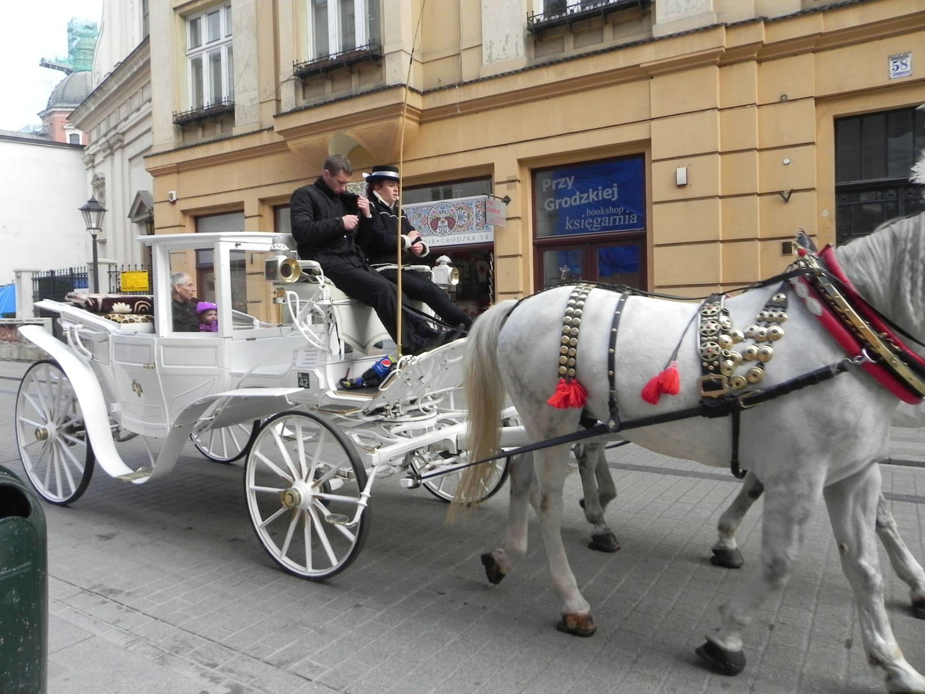 Kraków - wioski tematyczne (100)
