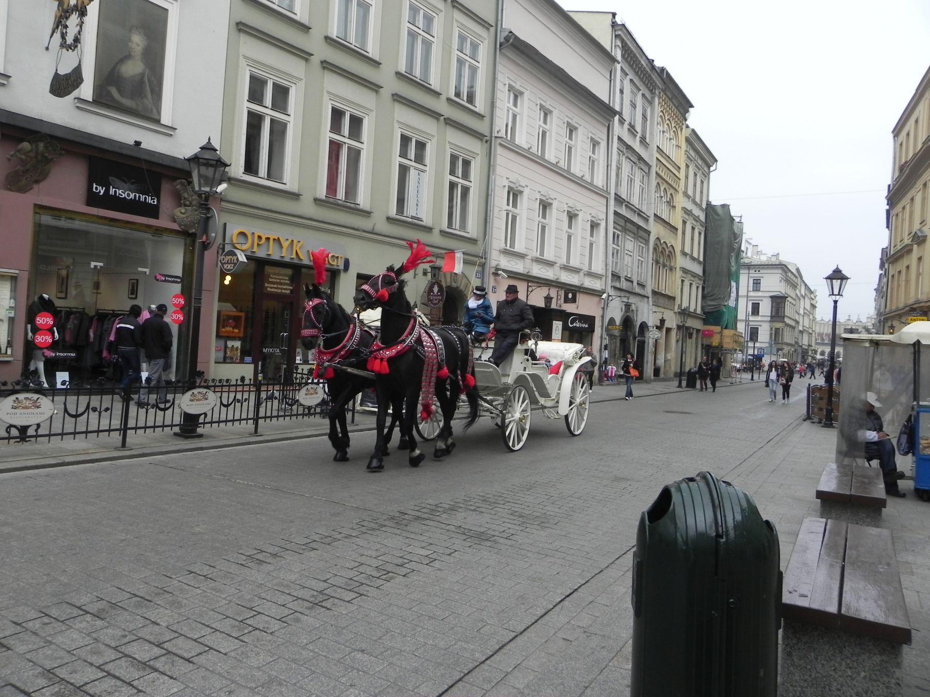 Kraków - wioski tematyczne (64)