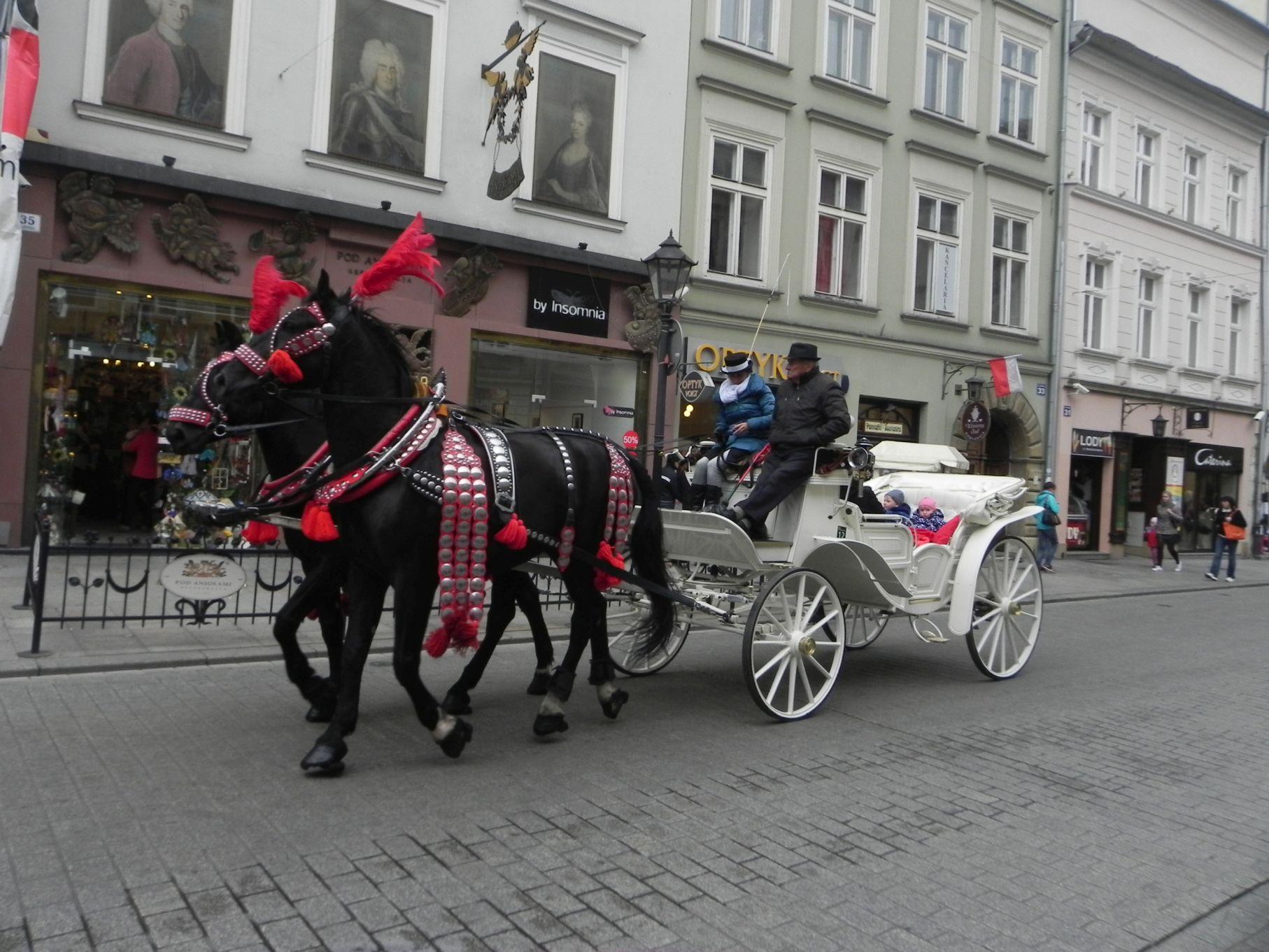 Kraków - wioski tematyczne (65)