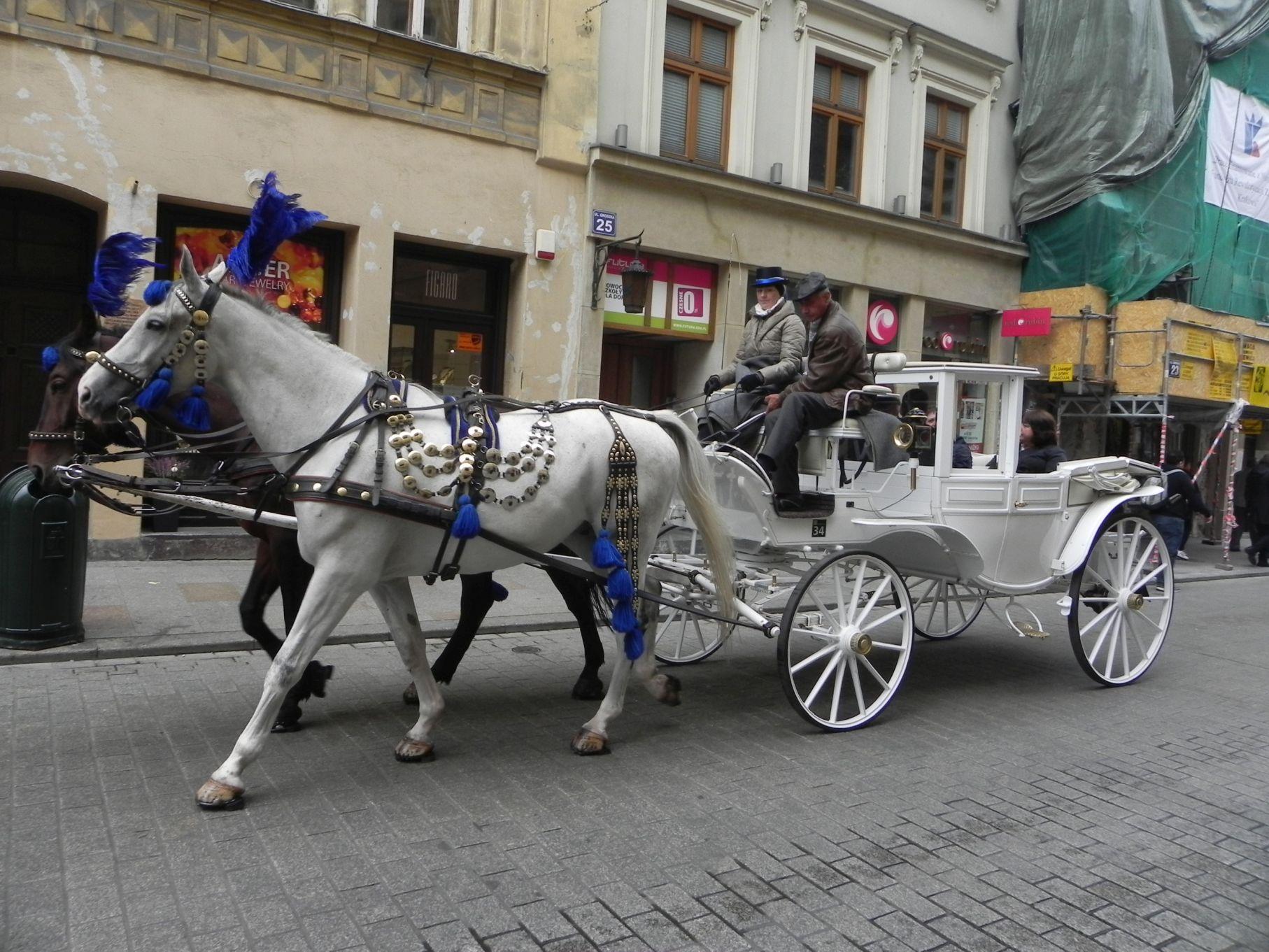 Kraków - wioski tematyczne (67)