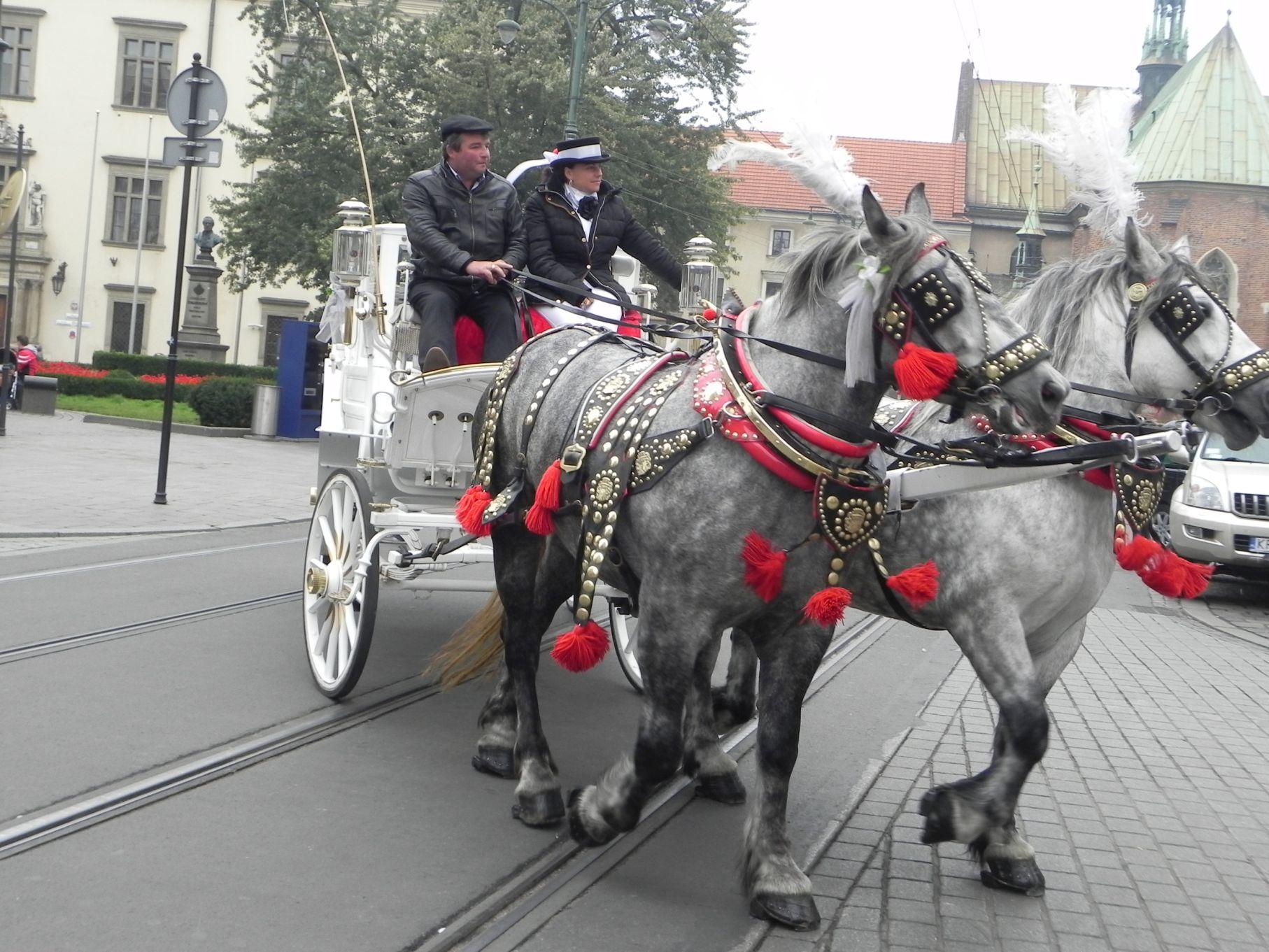 Kraków - wioski tematyczne (68)