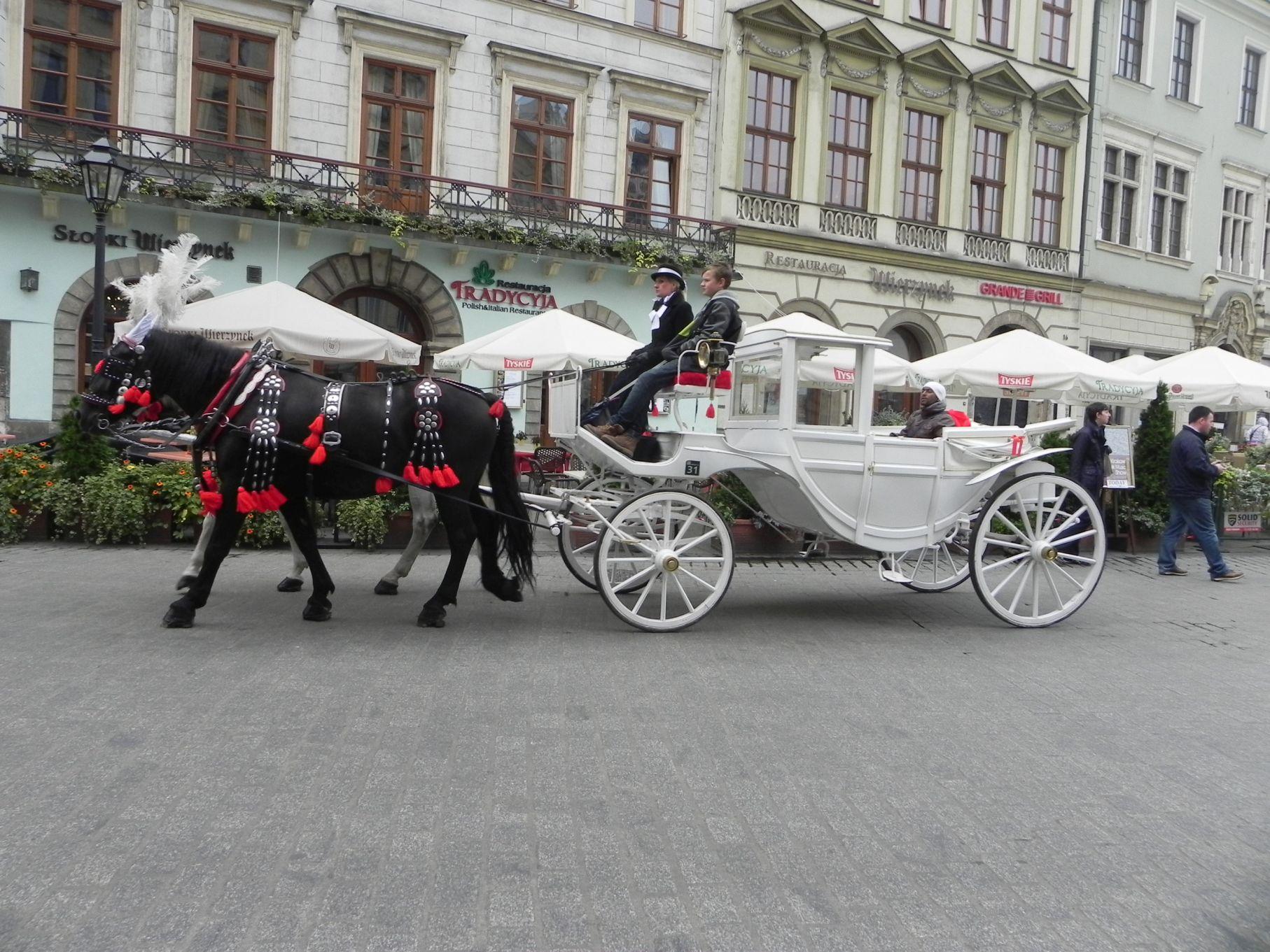 Kraków - wioski tematyczne (73)