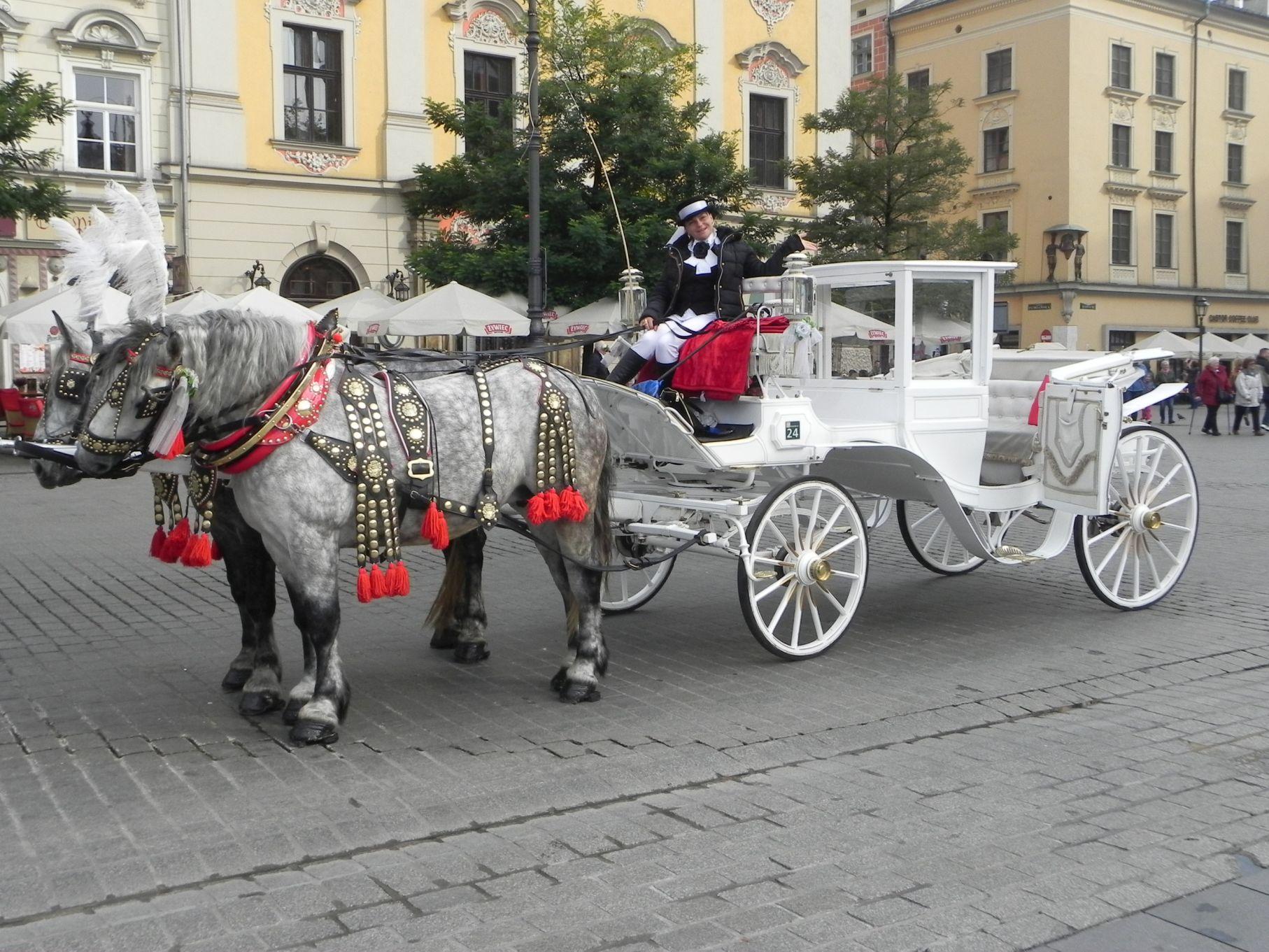 Kraków - wioski tematyczne (85)