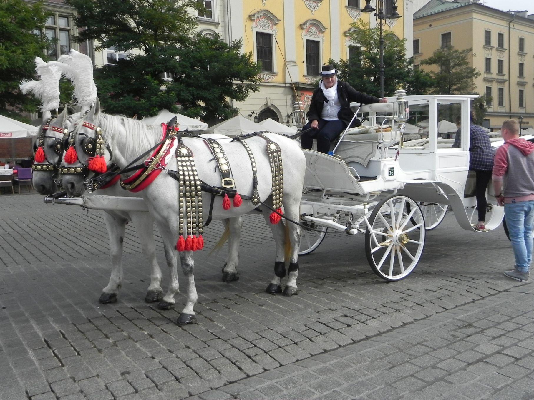 Kraków - wioski tematyczne (86)