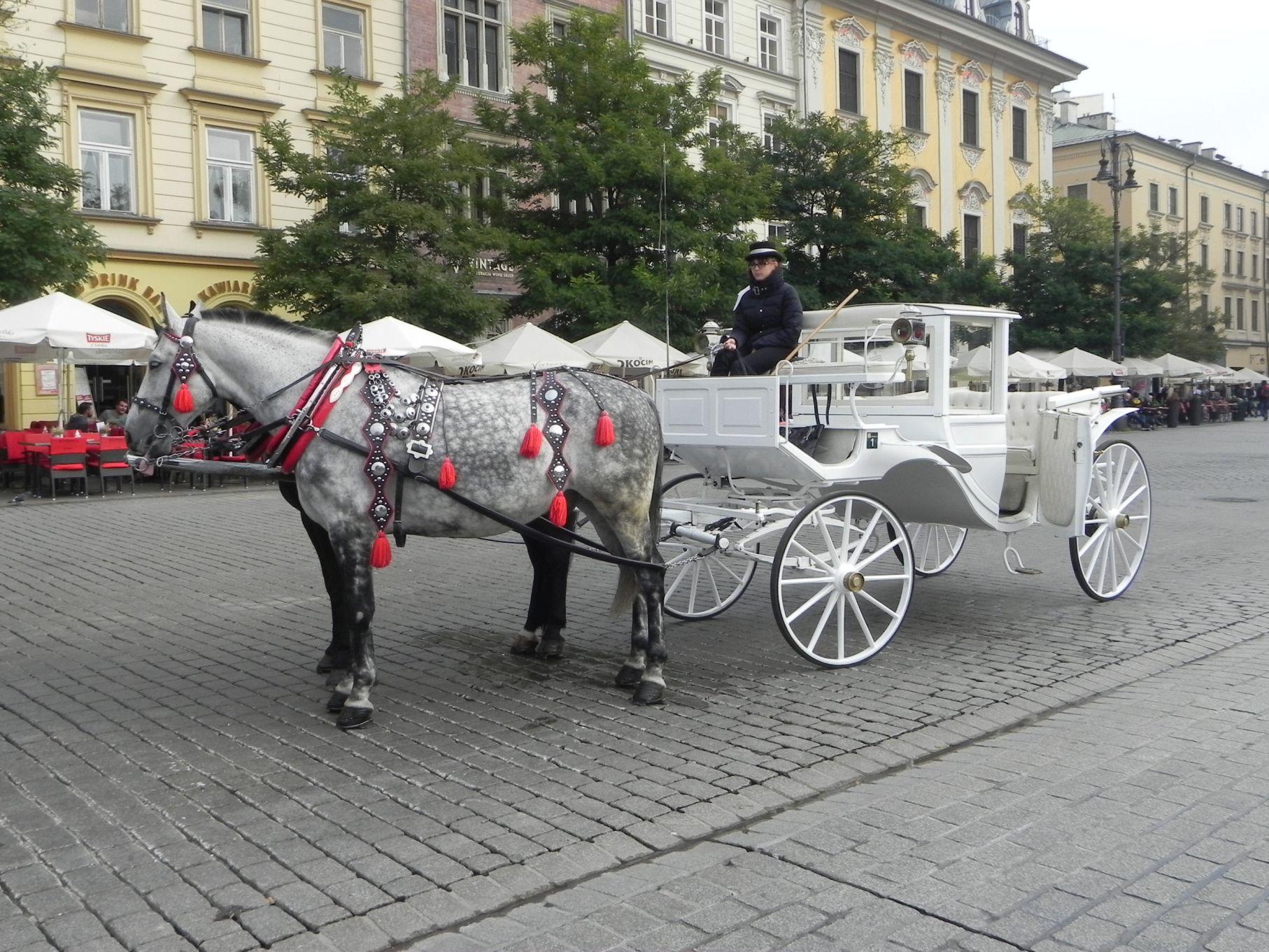Kraków - wioski tematyczne (87)