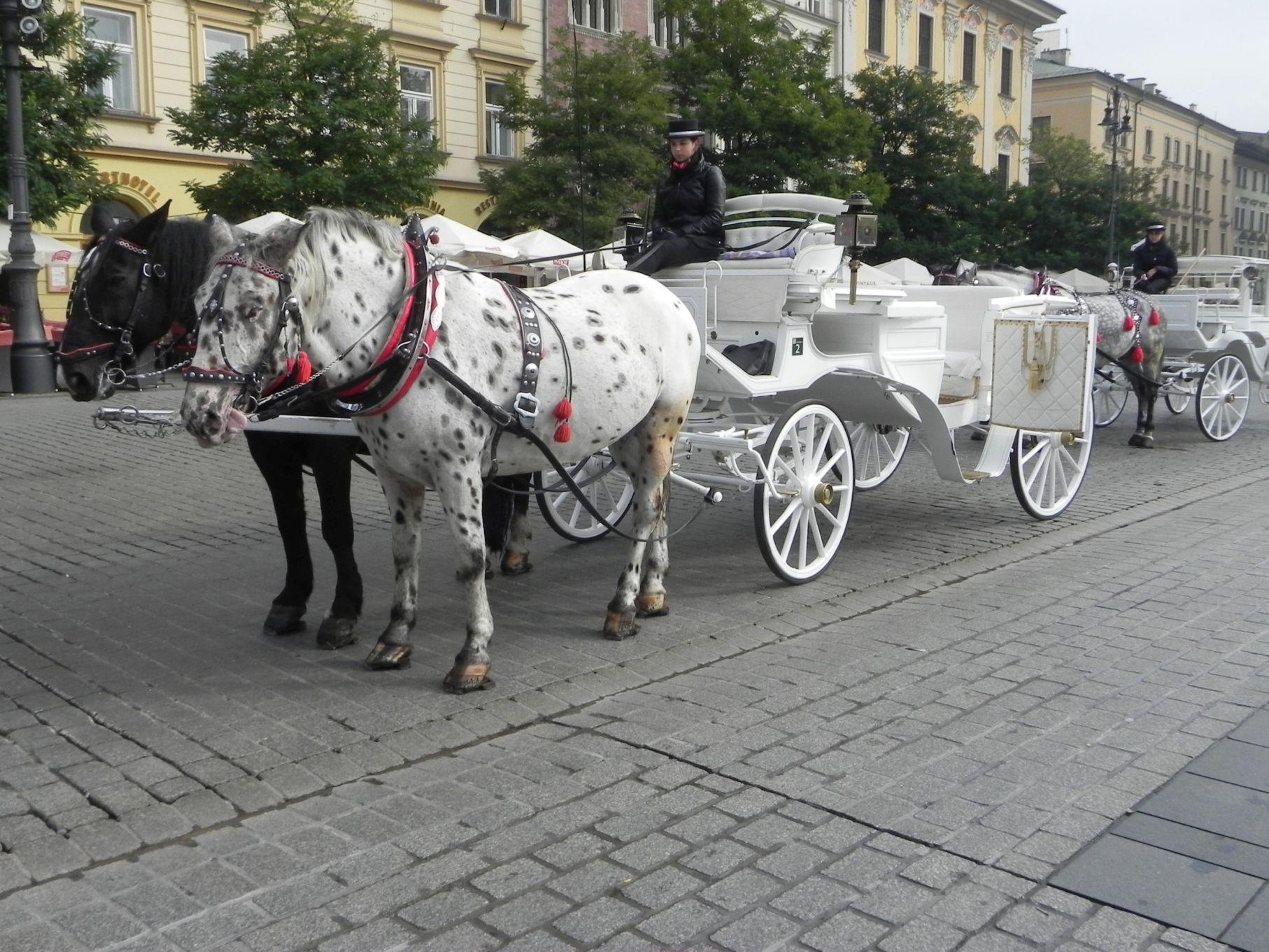 Kraków - wioski tematyczne (88)