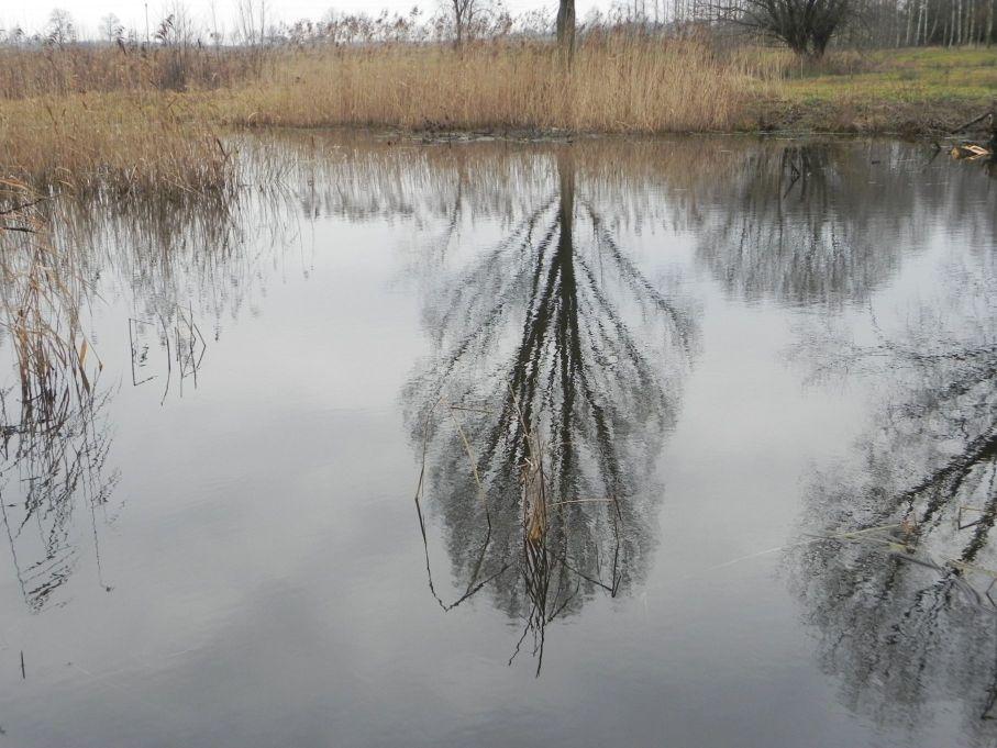 Galeria zdjęć Sochowej Zagrody - podwórko i przyroda (18)