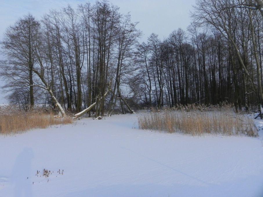 Galeria zdjęć Sochowej Zagrody - podwórko i przyroda (42)