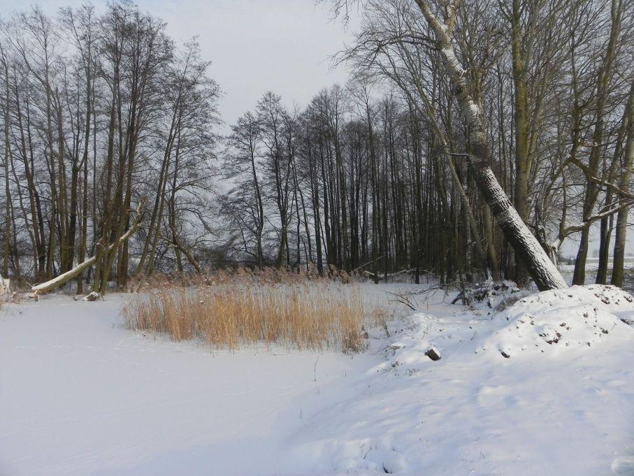 Galeria zdjęć Sochowej Zagrody - podwórko i przyroda (43)