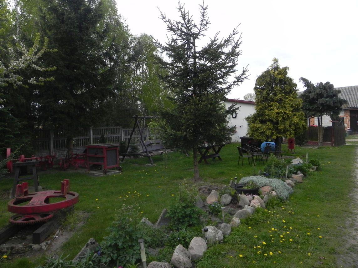 Galeria zdjęć Sochowej Zagrody - podwórko i przyroda (70)