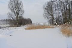 Galeria zdjęć Sochowej Zagrody - podwórko i przyroda (37)