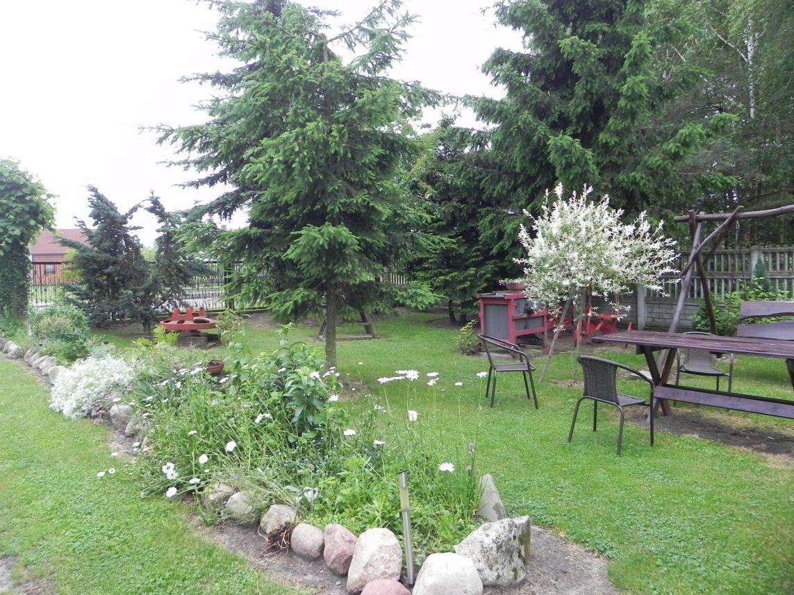 Galeria zdjęć Sochowej Zagrody - podwórko i przyroda (105)