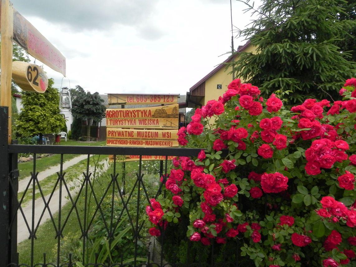 Galeria zdjęć Sochowej Zagrody - podwórko i przyroda (143)