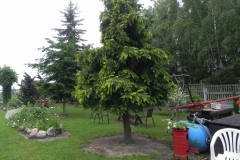 Galeria zdjęć Sochowej Zagrody - podwórko i przyroda (103)