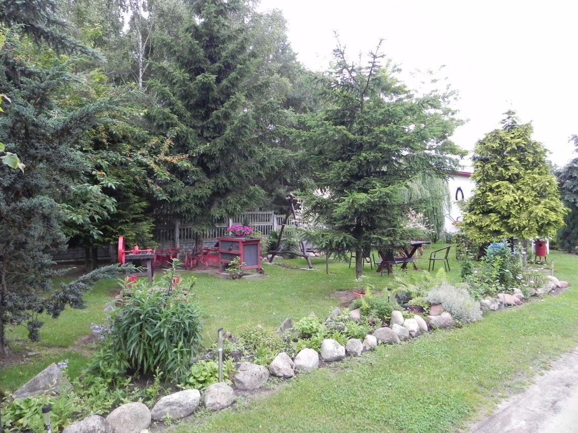 Galeria zdjęć Sochowej Zagrody - podwórko i przyroda (153)