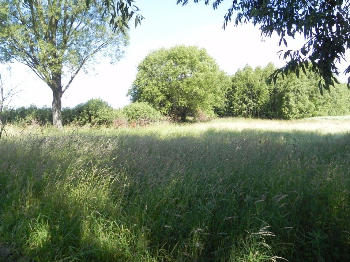 Galeria zdjęć Sochowej Zagrody - podwórko i przyroda (174)
