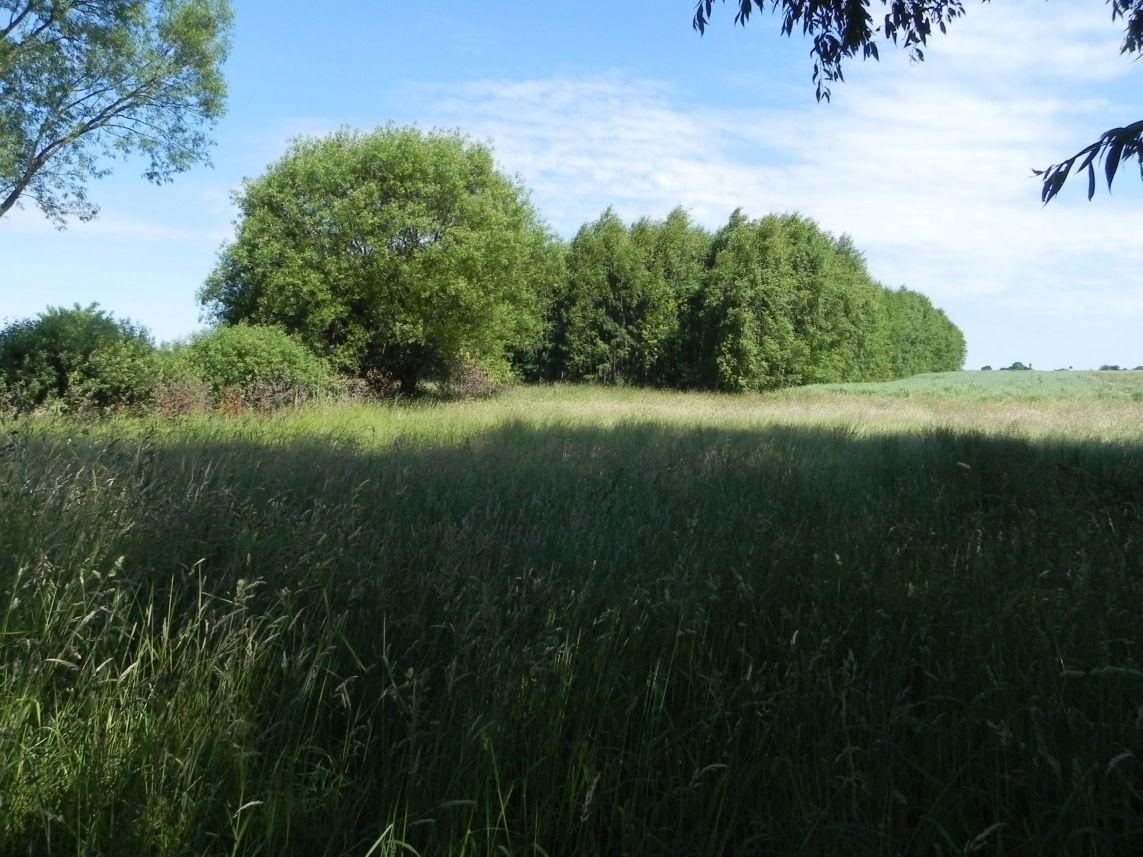 Galeria zdjęć Sochowej Zagrody - podwórko i przyroda (175)